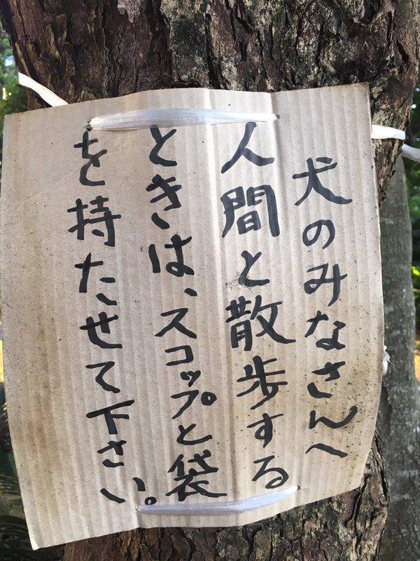 星田英利の画像 p1_35