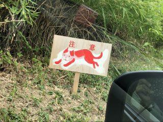 いったい何に注意すればいいの?美術館近くで謎の赤い猫の看板が多数目撃される
