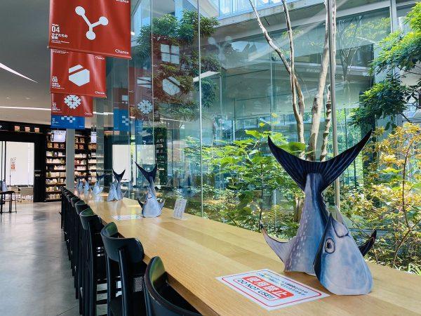 近畿大学の図書館内にマグロ