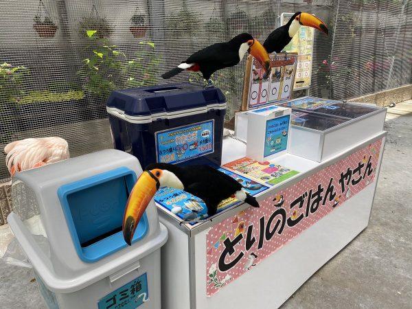 ご飯を買ってほしそうな鳥