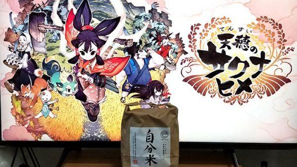 米 作り サクナヒメ